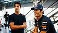 Alan Jones hält große Stücke auf Landsmann Daniel Ricciardo und sieht ihn deshalb 2013 an Mark Webbers Stelle bei Red Bull - Foto: Red Bull