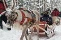 WRC - Arctic-Rallye Finnland - Fotos Arctic-Rallye Finnland 2021