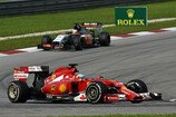 Formel 1 2014, Malaysia GP, Sonntag, Alonso, Hülkenberg, Ferrari, Force India, Bild: Sutton