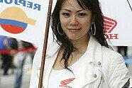 Girls - MotoGP 2008, Malaysia GP, Sepang, Bild: Sutton