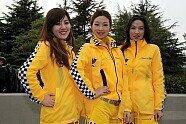 DTM Grid Girls: Die schönsten Post-Mädels 2008-2019 - DTM 2010, Verschiedenes, Bild: Sutton