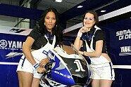 Girls - MotoGP 2011, Katar GP, Losail, Bild: Milagro