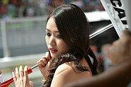 Girls - MotoGP 2012, Malaysia GP, Sepang, Bild: Milagro