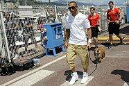 Hamiltons Hund Roscoe - Formel 1 2013, Verschiedenes, Monaco GP, Monaco, Bild: Sutton