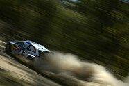 Shakedown & Qualifying - WRC 2013, Rallye Australien, Coffs Harbour, Bild: Volkswagen Motorsport