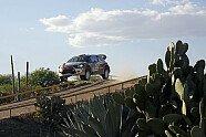 Tag 3 - WRC 2014, Rallye Mexiko, Leon-Guanajuato, Bild: Citroen