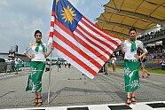 Girls - Formel 1 2014, Malaysia GP, Sepang, Bild: Sutton