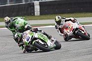Sonntag - MotoGP 2014, American GP, Austin, Bild: Gresini