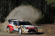 Shakedown - WRC 2014, Rallye Australien, Coffs Harbour, Bild: Sutton