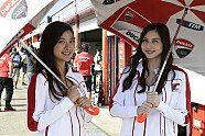Girls - MotoGP 2014, Japan GP, Motegi, Bild: Milagro
