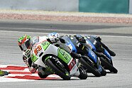 17. Lauf - Moto3 2014, Malaysia GP, Sepang, Bild: Gresini