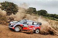 Tag 1 - WRC 2015, Rallye Italien-Sardinien, Alghero, Bild: Sutton