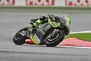 Sonntag - MotoGP 2015, Großbritannien GP, Silverstone, Bild: Tech 3