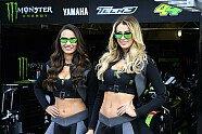Girls - MotoGP 2016, Frankreich GP, Le Mans, Bild: Milagro