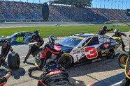 27. Lauf (Chase 1/10) - NASCAR 2016, Teenage Mutant Ninja Turtles 400, Joliet, Illinois, Bild: General Motors