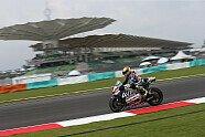 Samstag - MotoGP 2016, Malaysia GP, Sepang, Bild: Avintia