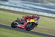 Der finale WSBK-Test auf Phillip Island - Superbike WSBK 2017, Testfahrten, Bild: Honda