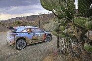 Shakedown & Vorbereitungen - WRC 2017, Rallye Mexiko, Leon-Guanajuato, Bild: Hyundai