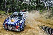 Tag 2 - WRC 2017, Rallye Australien, Coffs Harbour, Bild: Sutton