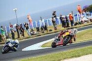 WSBK Phillip Island 2018 - Die besten Superbike-Fotos aus Australien - Superbike WSBK 2018, Australien, Phillip Island, Bild: Honda