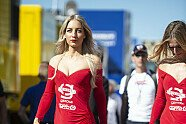 Grid Girls - MotoGP 2018, Dutch TT, Assen, Bild: LAT Images