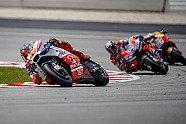 MotoGP Sepang: Bilder vom Sonntag - MotoGP 2018, Malaysia GP, Sepang, Bild: Pramac Racing
