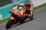 MotoGP Testfahrten Sepang 2019 - MotoGP 2019, Testfahrten, Sepang, Sepang, Bild: HRC