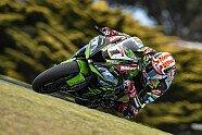 WSBK Australien 2019: Die besten Bilder - Superbike WSBK 2019, Australien, Phillip Island, Bild: Kawasaki