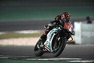 MotoGP Katar 2019: Das Rennen in Bildern - MotoGP 2019, Katar GP, Losail, Bild: Petronas SRT