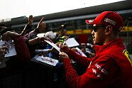 Donnerstag - Formel 1 2019, China GP, Shanghai, Bild: LAT Images