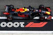 Samstag - Formel 1 2019, China GP, Shanghai, Bild: Red Bull