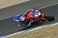 WSBK Jerez 2019: Die besten Bilder - Superbike WSBK 2019, Spanien (Jerez), Jerez de la Frontera, Bild: Honda