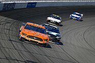 Rennen 23 - NASCAR 2019, Consumers Energy 400, Michigan, Bild: LAT Images
