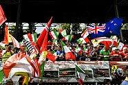 Sonntag - Formel 1 2019, Italien GP, Monza, Bild: LAT Images