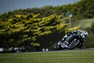 MotoGP Phillip Island - Samstag - MotoGP 2019, Australien GP, Phillip Island, Bild: Yamaha