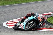 MotoGP Malaysia 2019: Alle Bilder vom Qualifying-Samstag - MotoGP 2019, Malaysia GP, Sepang, Bild: Petronas Yamaha SRT