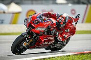 MotoGP Malaysia 2019: Alle Bilder vom Qualifying-Samstag - MotoGP 2019, Malaysia GP, Sepang, Bild: Ducati