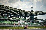 MotoGP Malaysia 2019: Alle Bilder vom Qualifying-Samstag - MotoGP 2019, Malaysia GP, Sepang, Bild: Pramac Racing
