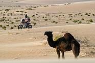 Rallye Dakar 2020 - 10. Etappe - Dakar 2020, Bild: ASO/Dakar