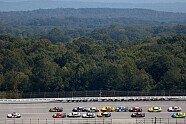 Playoffs 2020, Rennen 31 - NASCAR 2020, YellaWood 500, Talladega, Alabama, Bild: NASCAR