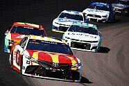 Regular Season 2021, Rennen 5 - NASCAR 2021, Instacart 500, Avondale, Arizona, Bild: NASCAR