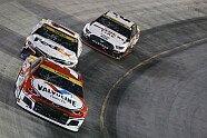 Playoffs 2021, Rennen 3 - NASCAR 2021, Bass Pro Shops Night Race, Bristol, Tennessee, Bild: LAT Images