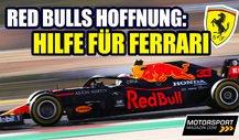 Red Bull hofft auf Motoren-Hilfe für Ferrari!