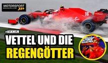 Vettel & Co: Wie gut sind die Regengötter der Formel 1?