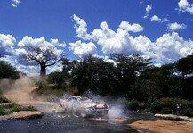 WRC: WRC muss Safari-Rallye-Comeback in Kenia 2020 absagen