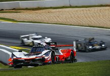 IMSA: Nach Audi und Porsche: Acura entwickelt ebenfalls LMDh-Rennauto