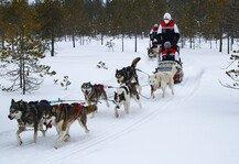 WRC: WRC Arctic-Rallye Finnland 2021: News, TV-Infos und Zeitplan