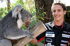 Formel 1 - Patrick Friesacher erlebt Wildlife in Adelaide