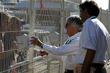 Formel 1 - Bernie Ecclestone: Schumacher kann den Titel noch holen