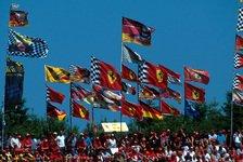 Formel 1 - Bernd Schneider: Schumi-Hype kommt nie wieder